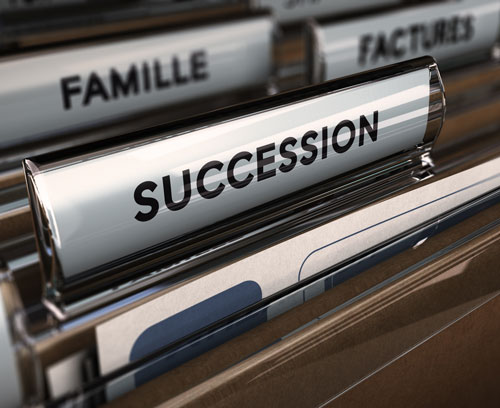will and succession law